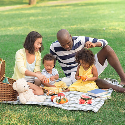 Summer Lawn Care Services